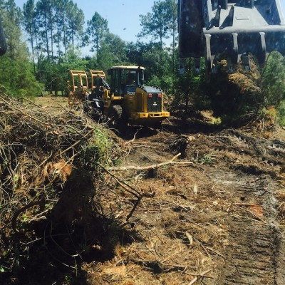 St Augustine Lot Clearing