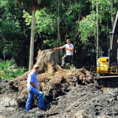 Tree Stump Removal St Augustine