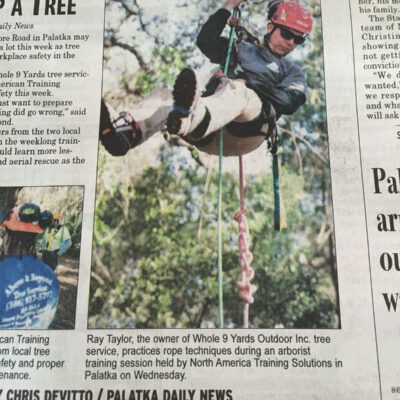 tree-service-news-article-NEW