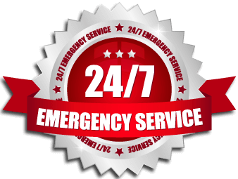 24 hour emergency tree service St. Augustine
